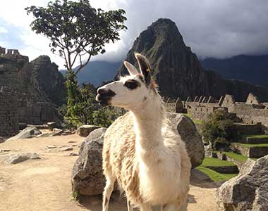 Cusco, Sacred Valley and Machu Picchu